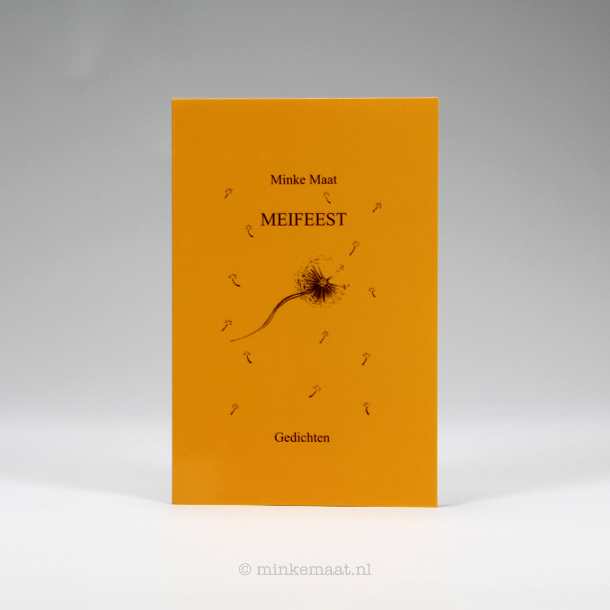 Boek Meifeest - Minke Maat