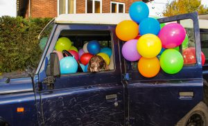 A balloon a day, dag 52